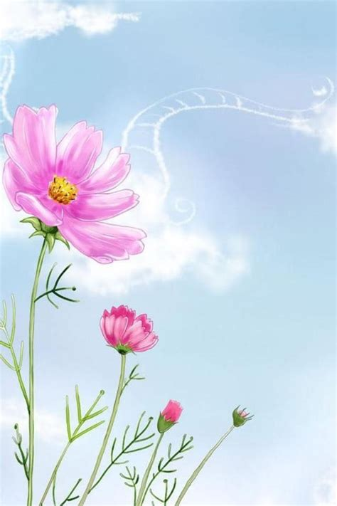 Free Iphone Wallpapers Hd Cute Flowers Iphone Wallpapers
