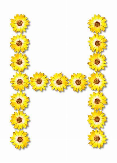 Floral Alphabet Clipart Svg