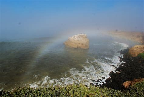 What Are Fogbows Earth Earthsky