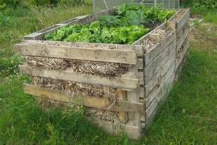 Wood Used For Raised Garden Beds by 25 Diy Ideas Using Pallets For Raised Garden Beds Snappy