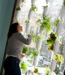 210 Best Images About Hydroponics And Aquaponiccs On