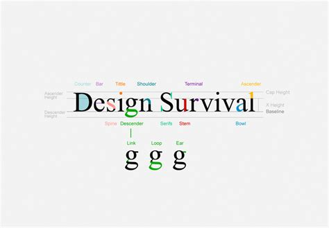 the designer s guide to typography design survival