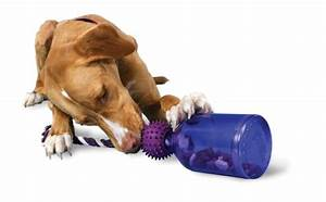 best indestructible dog toys for aggressive chewers fun With dog toys for power chewers