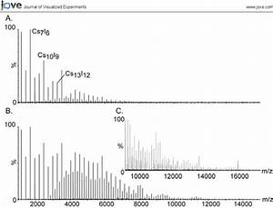 High Mass Calibration Using Cesium Iodide Ions  The Large