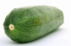 Zucchini Faulen An Der Spitze : gartentipps zucchini ~ Eleganceandgraceweddings.com Haus und Dekorationen