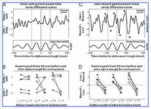 Time Series Plots Of Gamma Power Locked To Alpha Waves