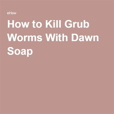 how to kill grubs naturally grubs worms and soaps on