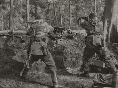 germans fighting   hurtgen forest  war dogs