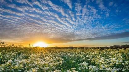 Rising Sun Wallpapers Sky