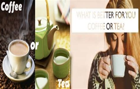 However in this article, we will discuss consumption of decaf coffee while pregnant. Five Differences between Coffee and Tea - Inminutes Magazine