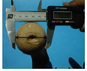 C Ta Electronic Digital Caliper Measuring Maximum Head