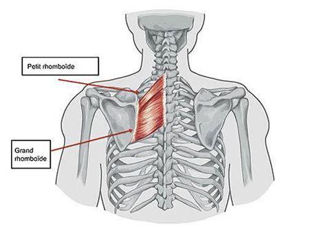 si鑒e pour le dos lombalgie et mal de reins