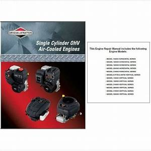 Briggs And Stratton Single Cylinder Ohv Air