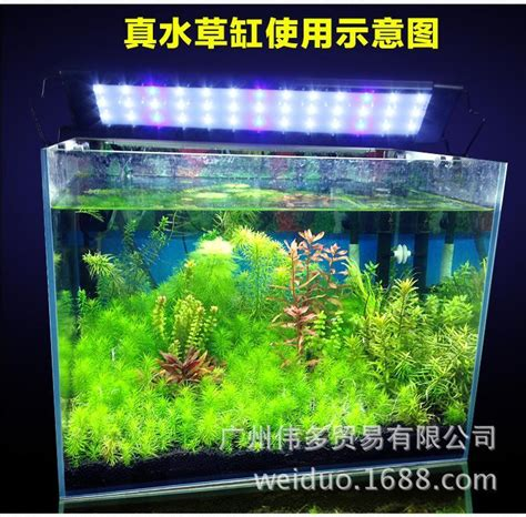 high brightness aquarium led lighting aquarium lights