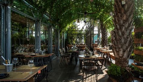 Restaurant In Israel Uses Inhouse Grown Herbs For Their. Kitchen Appliances Exeter. Kitchen Curtains How To Make. Kitchen Interior Price In Bangalore. Kitchen Art Vegetables. Kitchen Lighting Temperature. Kitchen Appliances Placement. Kitchen Sink Leaking. Kitchen Island Fall Decor