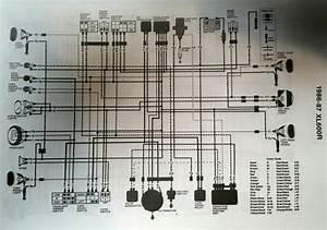 Pit Bike Engine Diagram Xl Di 2020
