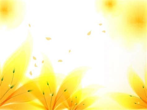 fresh yellow flowers backgrounds  powerpoint