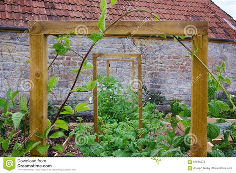 Rustic Country Vegetable & Flower Garden With Frame For