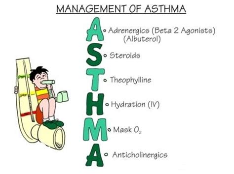 What Is Asthma? What Are Asthma Symptoms, Causes. Holly Lettering. Banksy Murals. Luxury Stickers. Custom Vinyl Decal Stickers. Tiki Bar Signs. Template Signs. Endocrine Signs. Painterly Murals