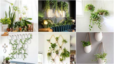 Kleines Haus Bad Essen Brunch by Natur Ins Haus Bringen 20 Ideen F 252 R Zimmerpflanzen