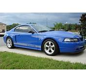 2004 Ford Mustang  Pictures CarGurus
