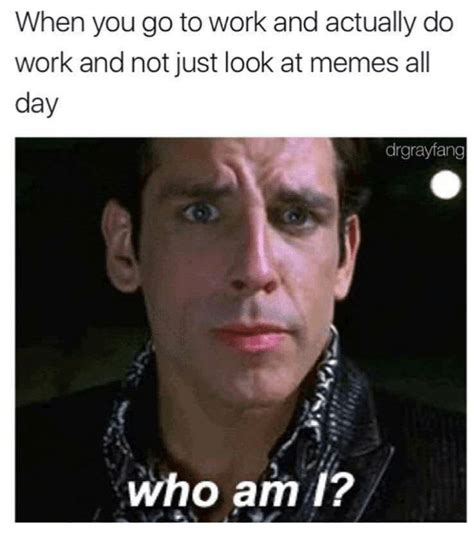 Look At This Meme - when you go to work and actually do work and not just look at memes all day drgrayfang who am 1