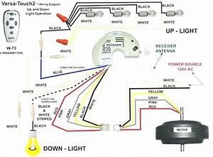 Wiring Diagram For Hunter Ceiling Fan