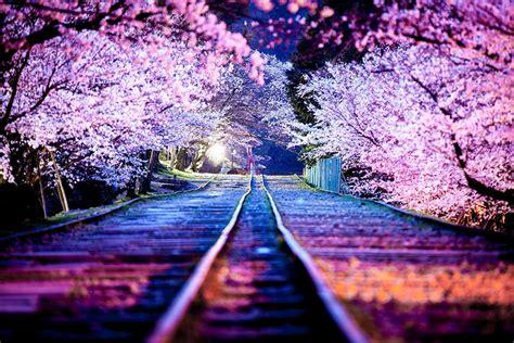 top  japan street photography shots  capture