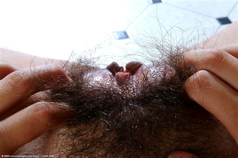 Hairy Pussy Of A Sexy Amateur Latina Brunette Nancy In