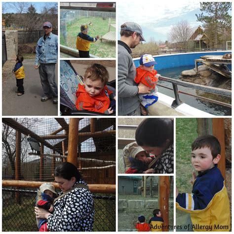 zoo enjoy toddler enjoying together