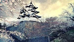 Japan Sakura Flowers Hd Wallpapers