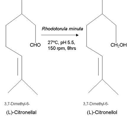Citronella L by Figure 1 Biotransformation Of L Citronellal To L