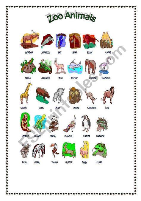 zoo animals esl worksheet  costaricanangel