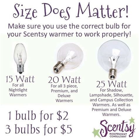 scentsy light bulb size 30 best accessories bulbs parts images on pinterest