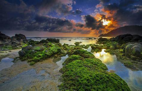pantai wedi ombo gunungkidul pantai jogja  wajib