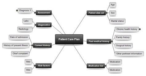 concept mapping software  nursing mindview