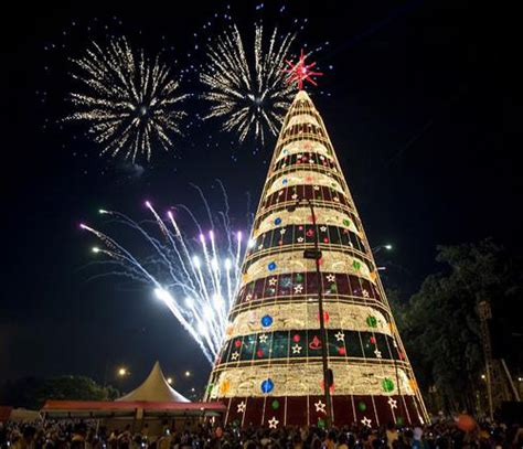 30 unconventional christmas trees you haven t seen before