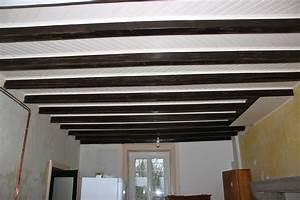Lessiver Plafond Avant Peinture : superbe nettoyer plafond avant peinture 3 cui ~ Premium-room.com Idées de Décoration