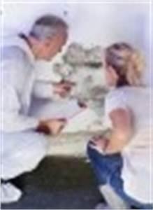 Kalk Gegen Pilze : schimmel beseitigen kologisch und f r l nger nur mit alkohol und kalk ~ Michelbontemps.com Haus und Dekorationen