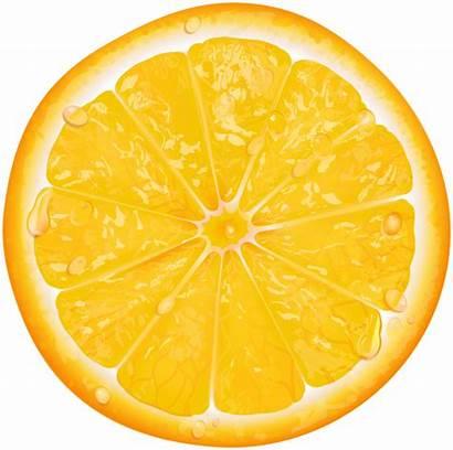 Orange Slice Transparent Clip Fruit Clipart Slices