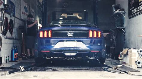 rwhp blue devil ford mustang sounds evil video news