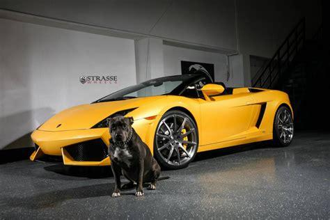 Giallo Midas Lamborghini Gallardo Spyder With Strasse ...