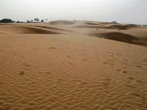 Thar Desert | Meet the Bishnoi