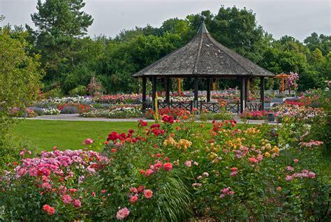 Der Rosenpavillon  Botanischer Garten Augsburg Foto