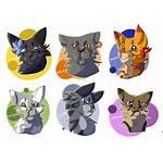 Warrior Cats Cat Medicine Icons Deviantart Character