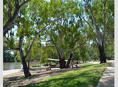 Wagga Wagga Australia