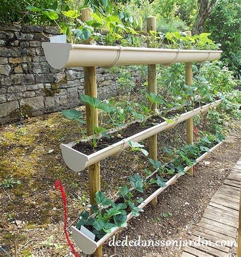 comment faire pousser des fraises en hauteur d 233 d 233 dans jardin