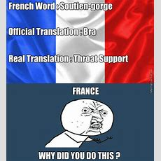 French Lesson By Tanin  Meme Center