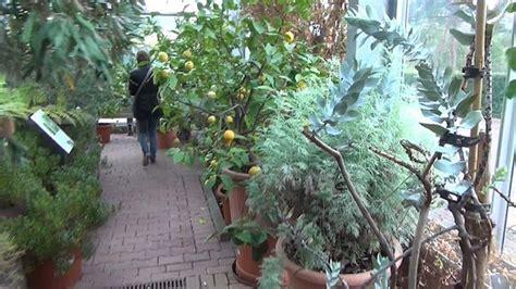 Botanischer Garten Trier by Botanischer Garten D 252 Sseldorf Aktuelle 2018 Lohnt Es