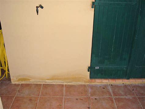 que faire contre l humidité dans une chambre humidité murs extérieurs question travaux forum maçonnerie